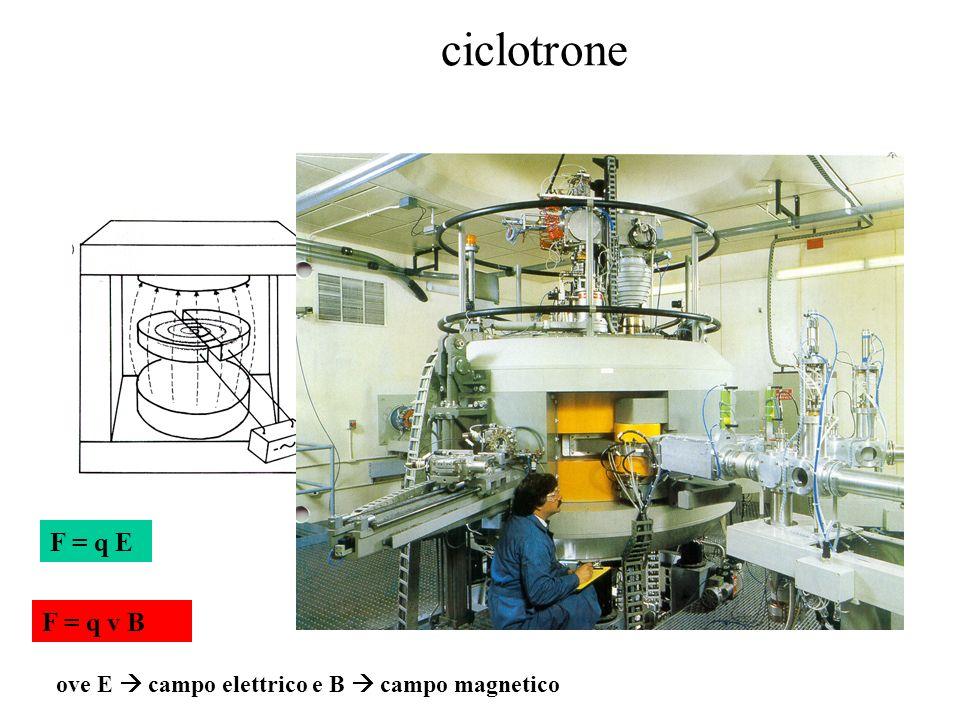 ciclotrone F = q E F = q v B ove E  campo elettrico e B  campo magnetico