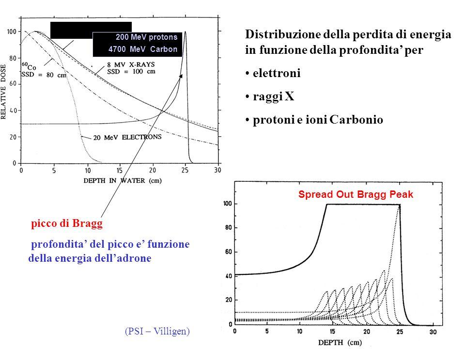protoni e ioni Carbonio