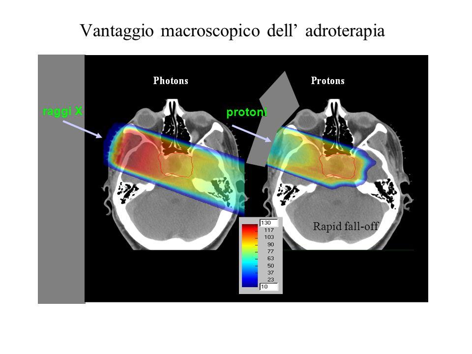 Vantaggio macroscopico dell' adroterapia
