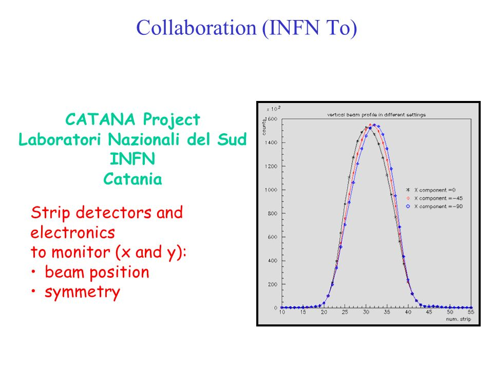 Collaboration (INFN To)