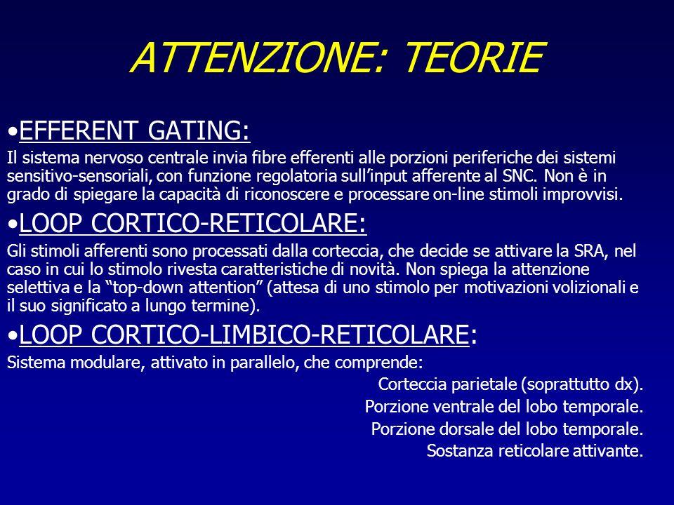 ATTENZIONE: TEORIE EFFERENT GATING: LOOP CORTICO-RETICOLARE: