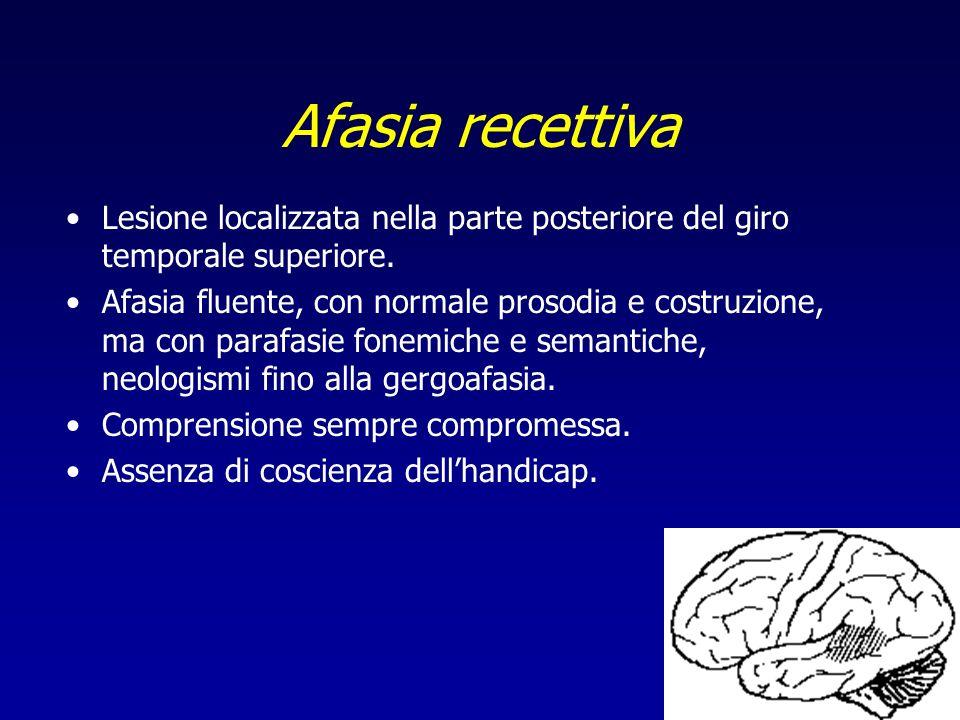Afasia recettiva Lesione localizzata nella parte posteriore del giro temporale superiore.