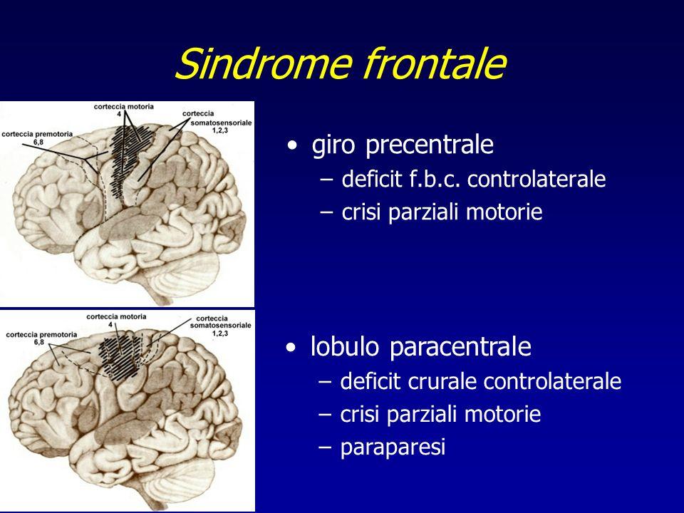 Sindrome frontale giro precentrale lobulo paracentrale