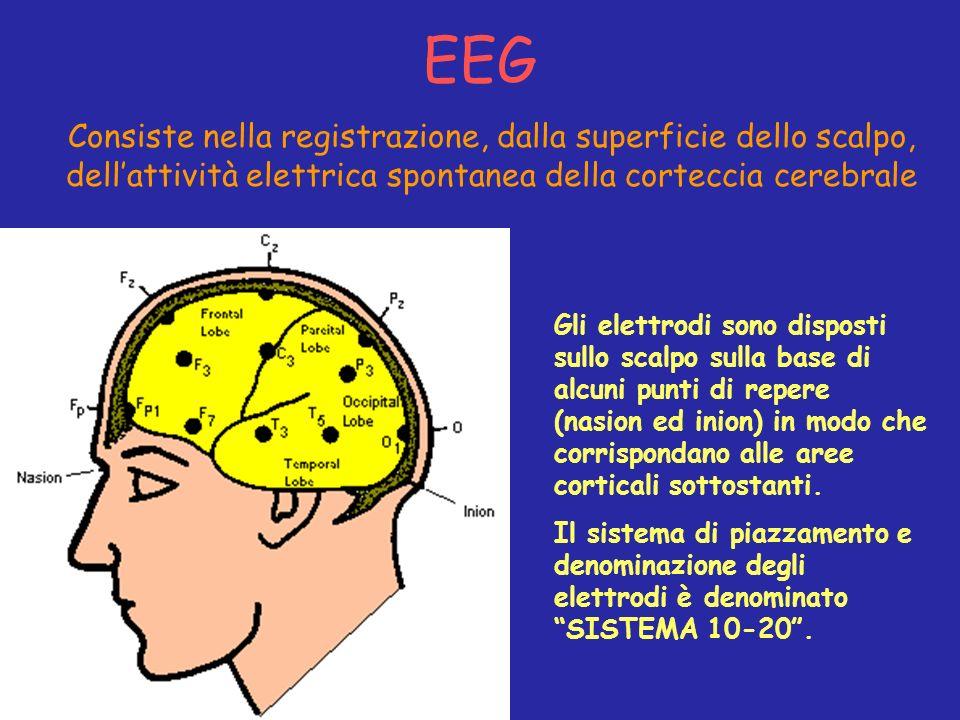 EEG Consiste nella registrazione, dalla superficie dello scalpo, dell'attività elettrica spontanea della corteccia cerebrale.