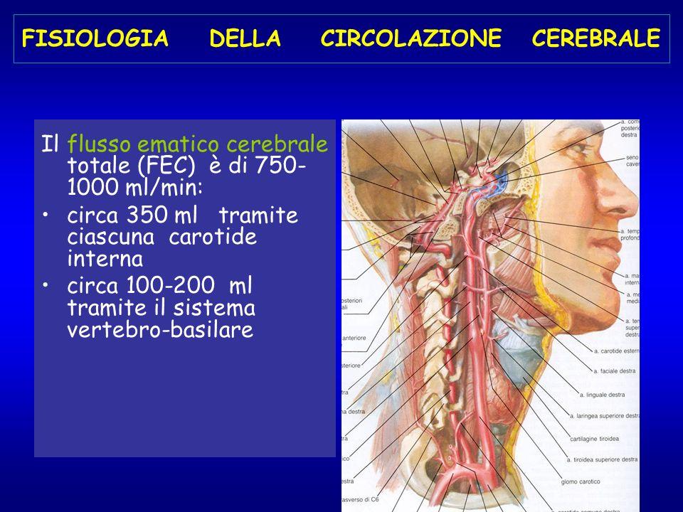 FISIOLOGIA DELLA CIRCOLAZIONE CEREBRALE