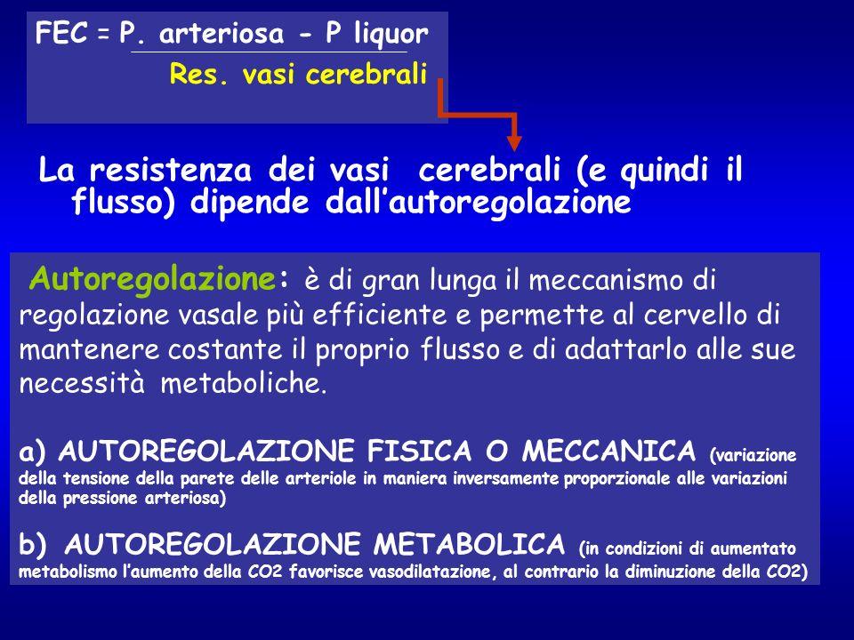 FEC = P. arteriosa - P liquor