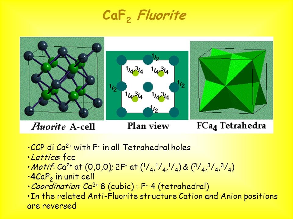 CaF2 Fluorite CCP di Ca2+ with F- in all Tetrahedral holes