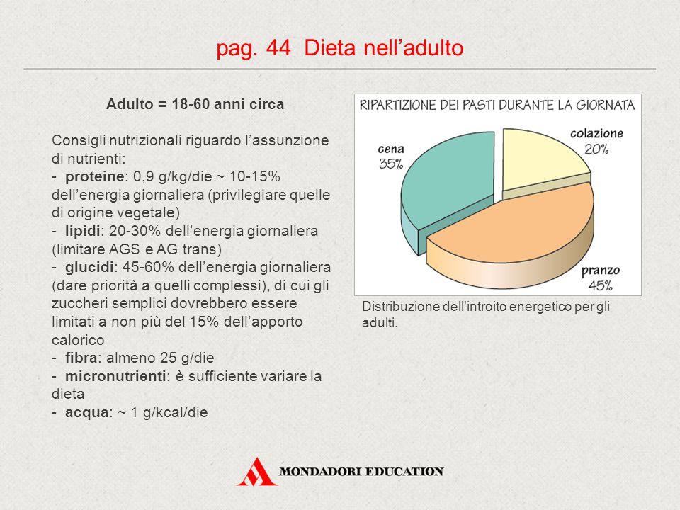 pag. 44 Dieta nell'adulto Adulto = 18-60 anni circa