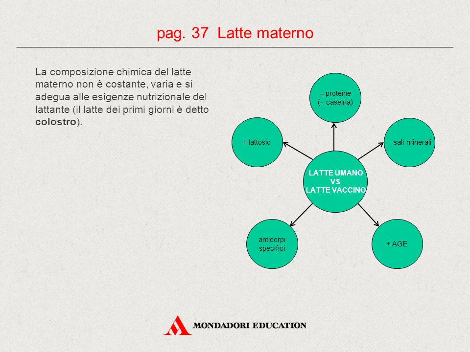 pag. 37 Latte materno