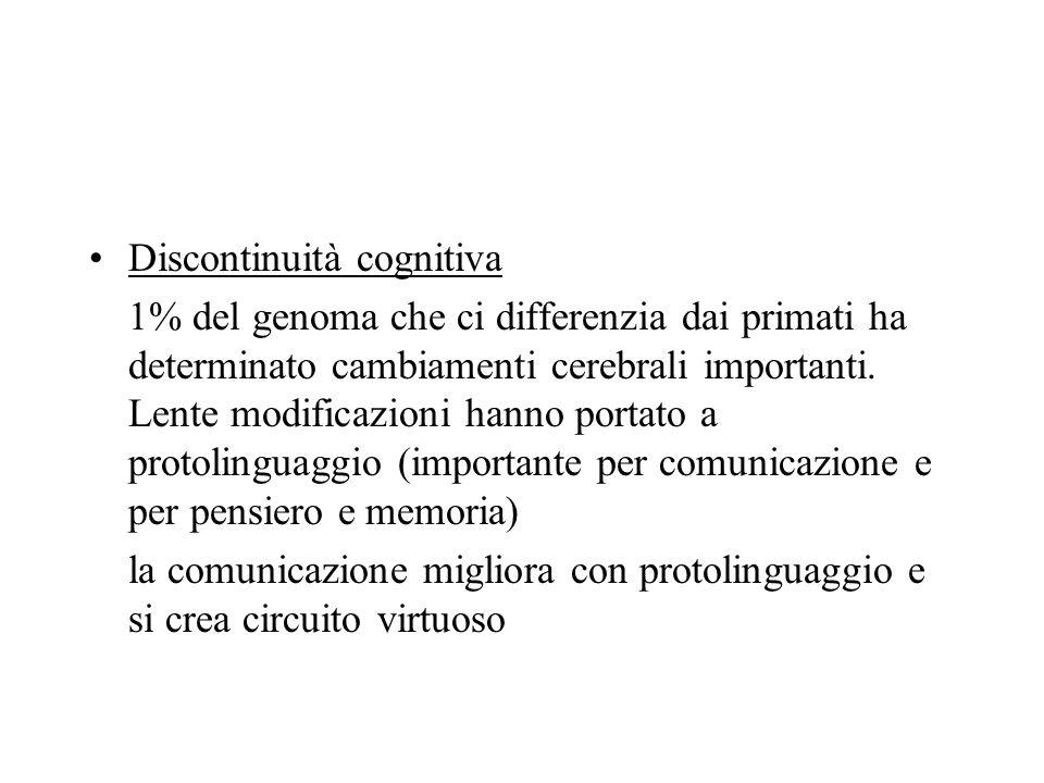 Discontinuità cognitiva