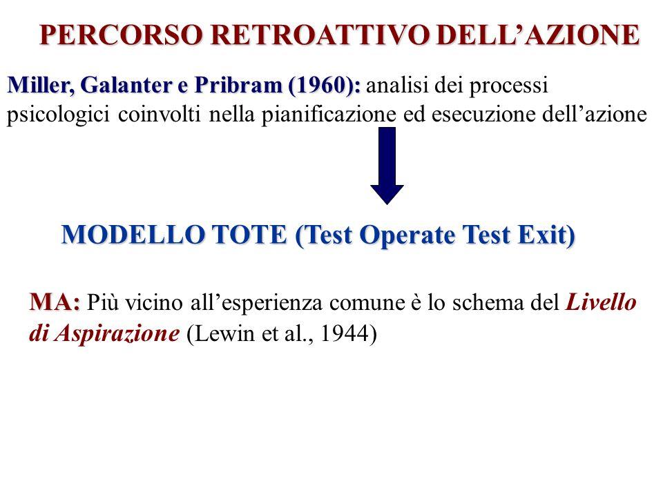 PERCORSO RETROATTIVO DELL'AZIONE MODELLO TOTE (Test Operate Test Exit)