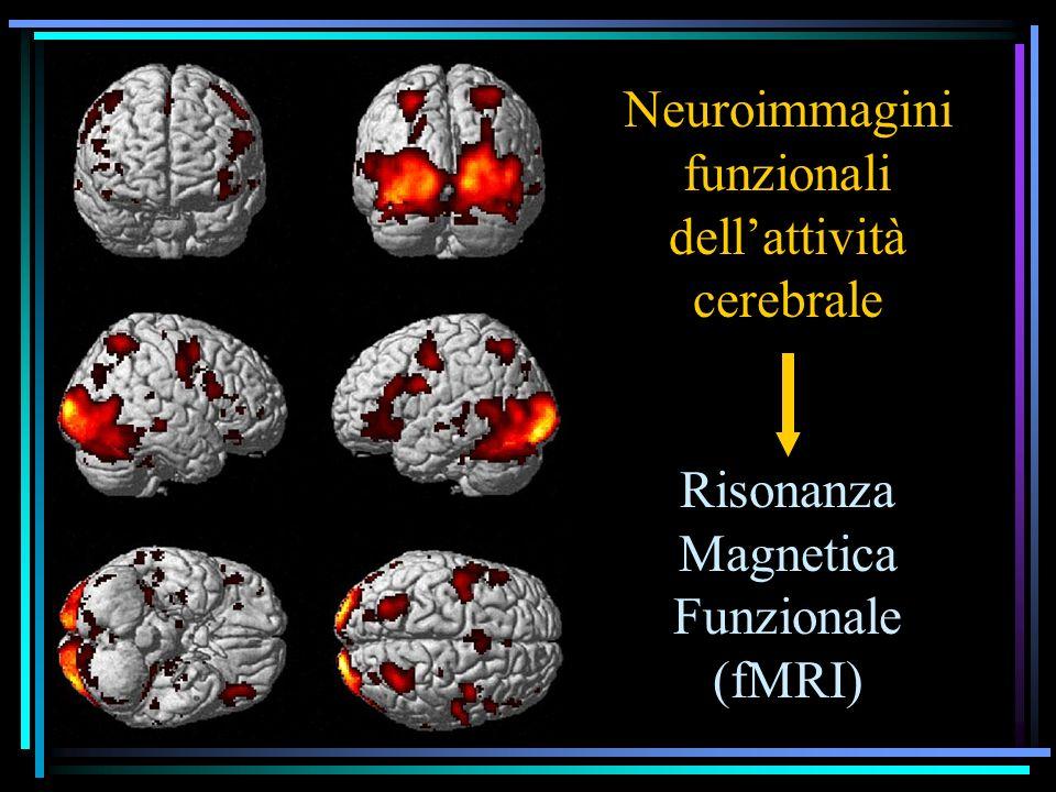 Neuroimmagini funzionali dell'attività cerebrale