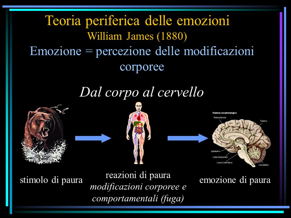 Teoria periferica delle emozioni William James (1880)
