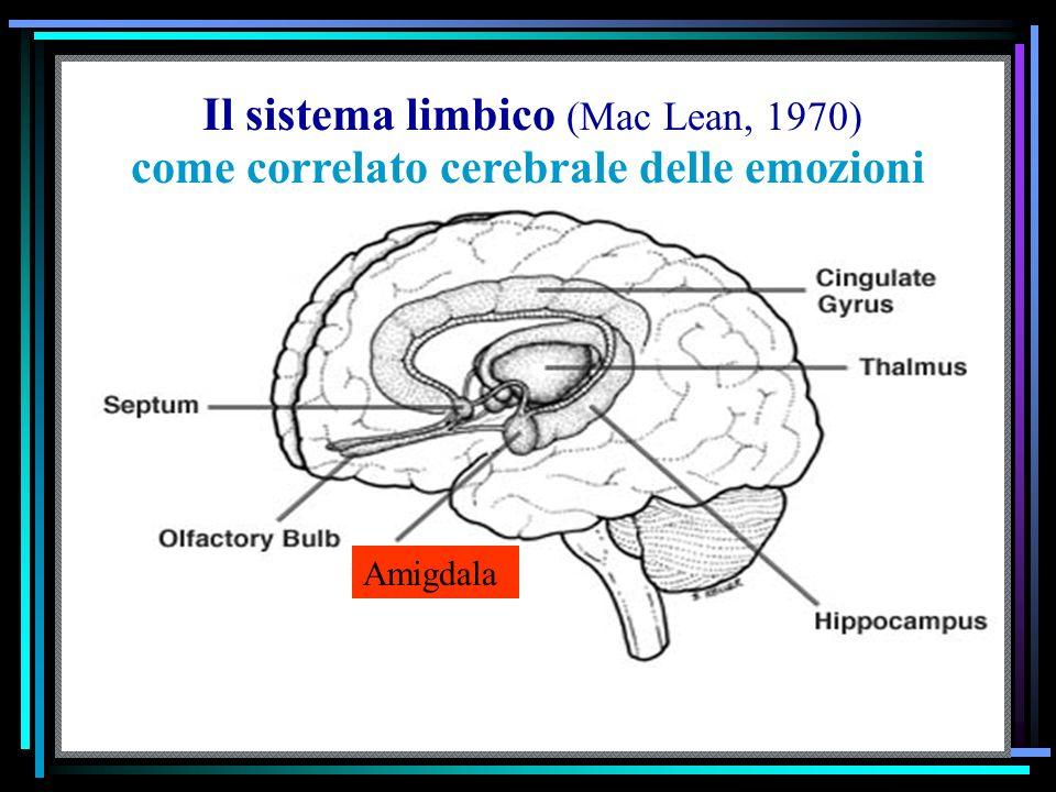 come correlato cerebrale delle emozioni