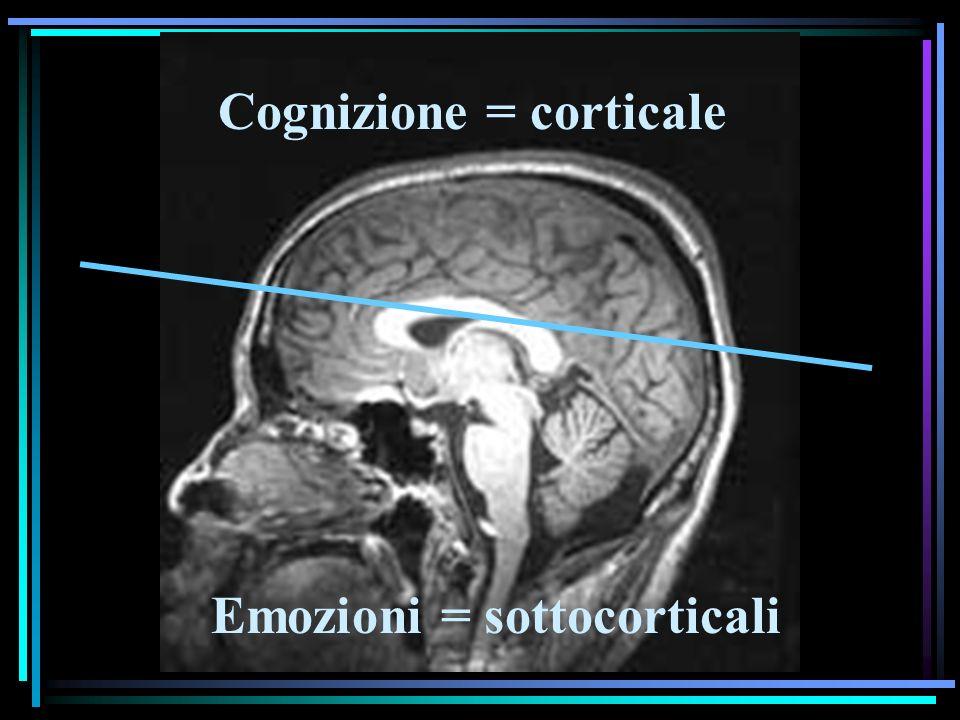 Cognizione = corticale Emozioni = sottocorticali