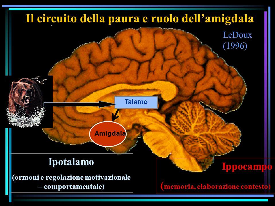 Il circuito della paura e ruolo dell'amigdala