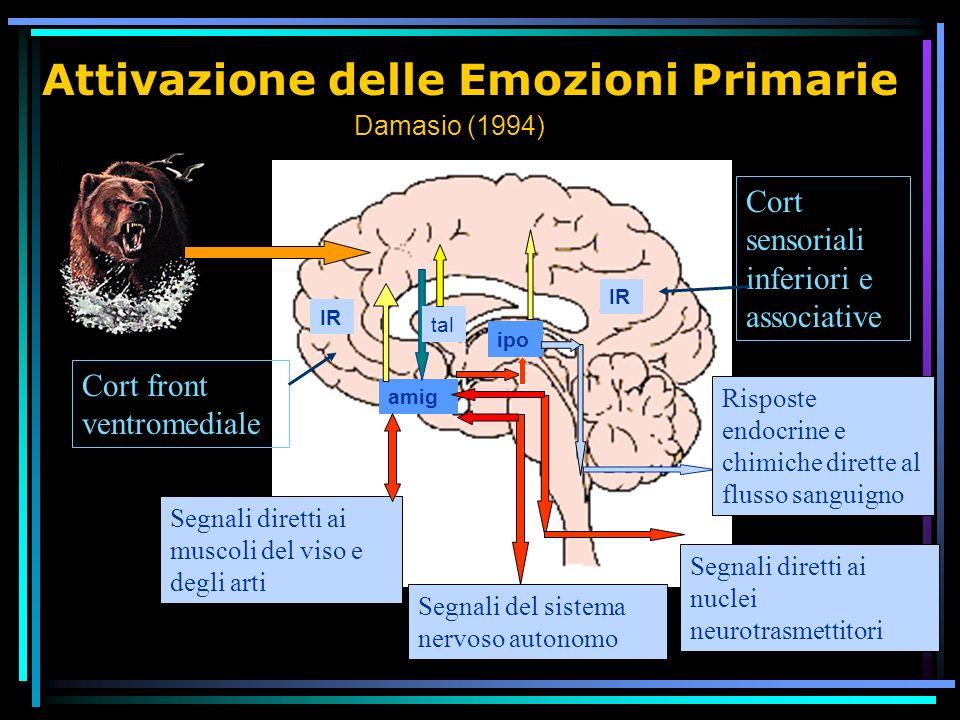 Attivazione delle Emozioni Primarie