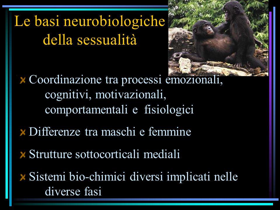 Le basi neurobiologiche della sessualità