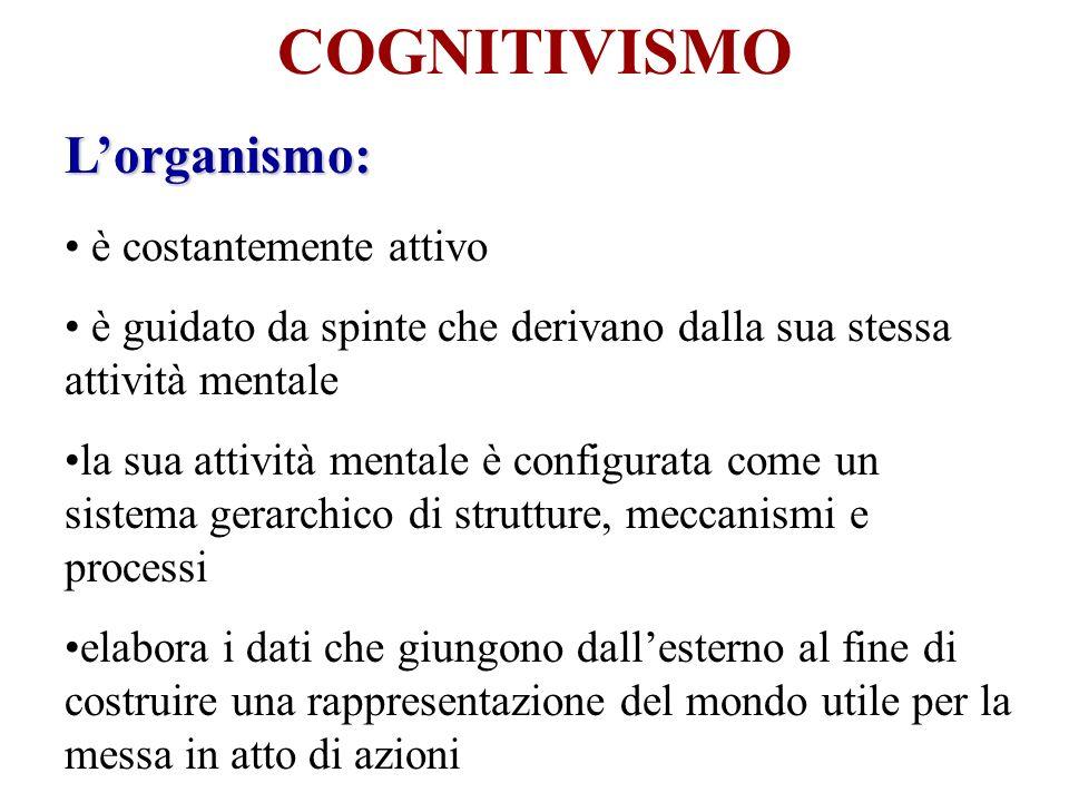 COGNITIVISMO L'organismo: è costantemente attivo