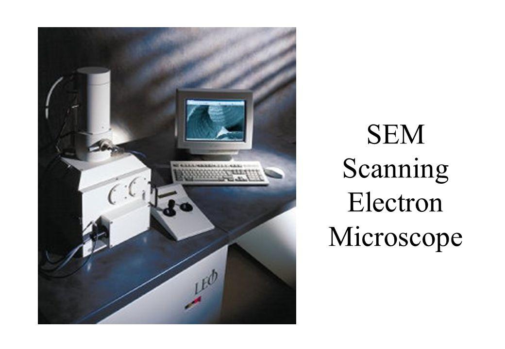 SEM Scanning Electron Microscope