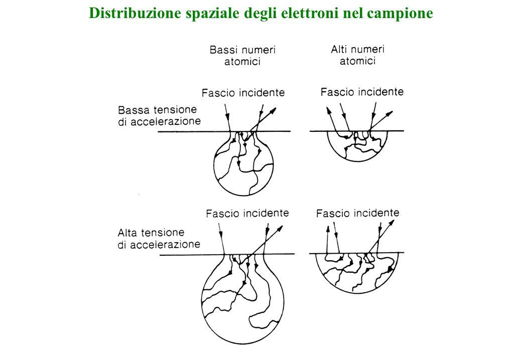 Distribuzione spaziale degli elettroni nel campione