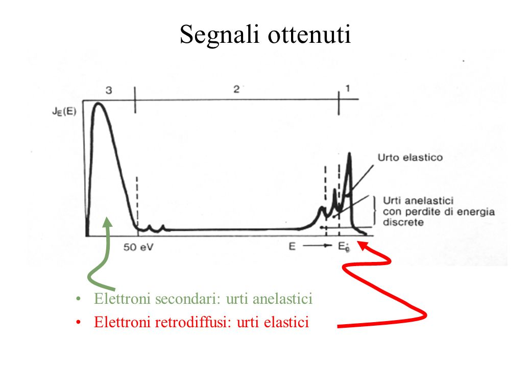 Segnali ottenuti Elettroni secondari: urti anelastici