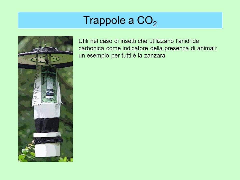 Trappole a CO2