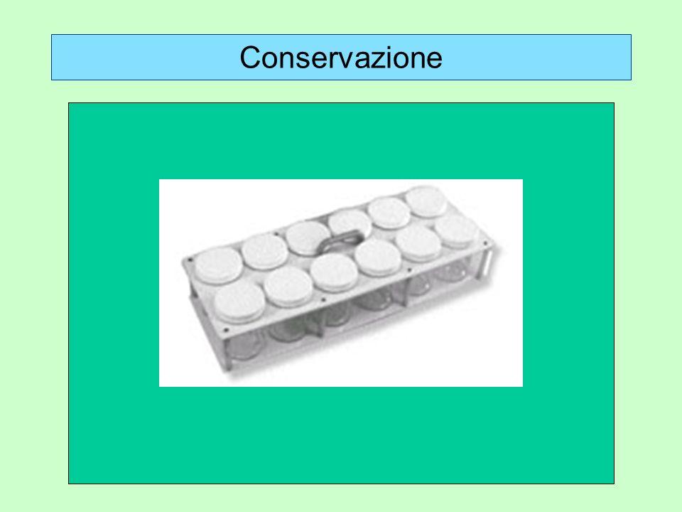 Conservazione a. Materiale cartellinato o spillato e conservato a secco: scatole entomologiche.