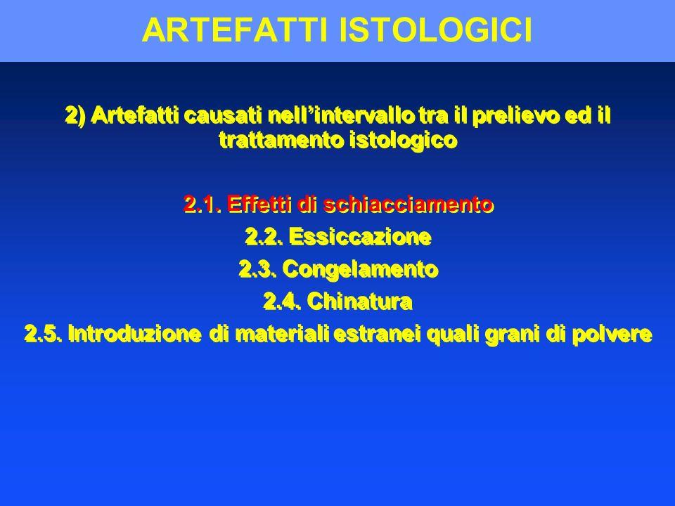 ARTEFATTI ISTOLOGICI 2) Artefatti causati nell'intervallo tra il prelievo ed il trattamento istologico.