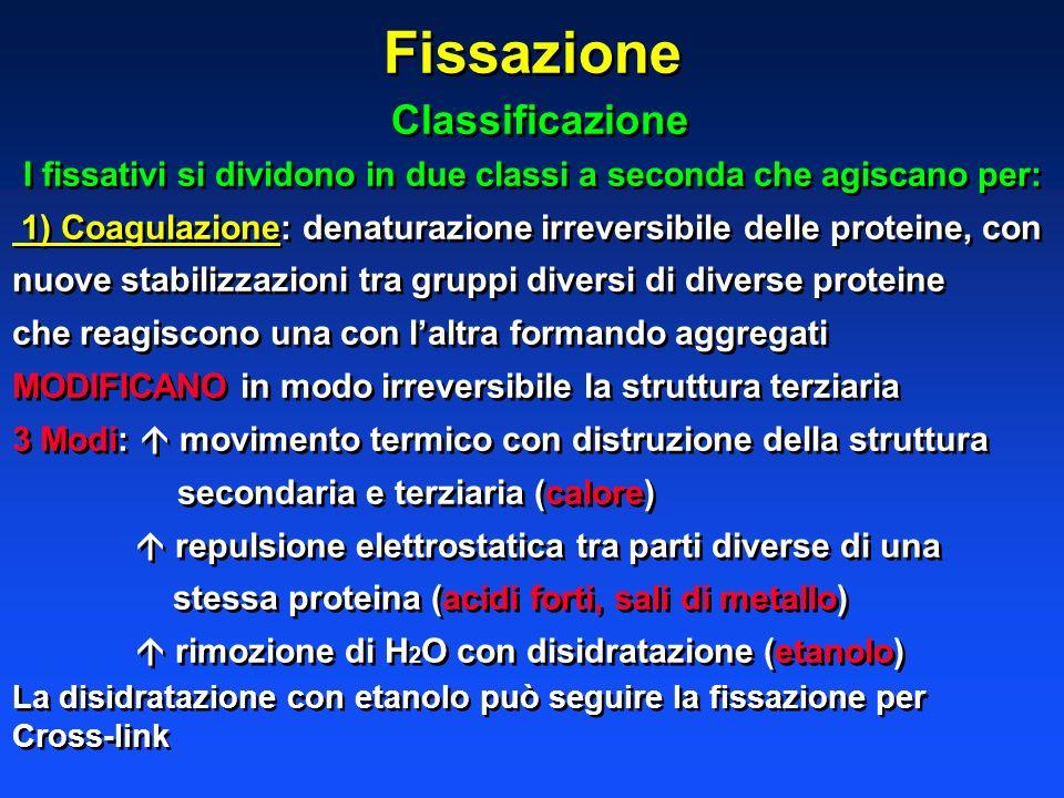I fissativi si dividono in due classi a seconda che agiscano per:
