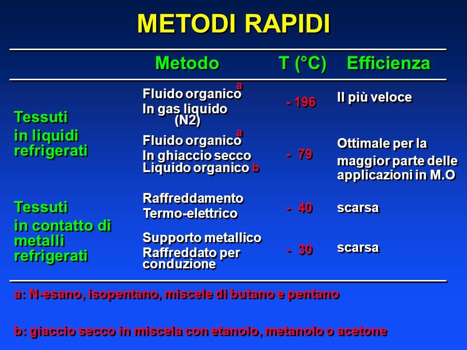 METODI RAPIDI Metodo T (°C) Efficienza Tessuti in liquidi refrigerati