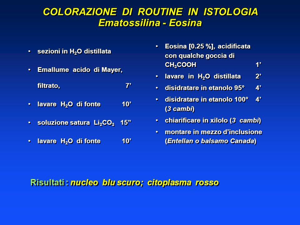 COLORAZIONE DI ROUTINE IN ISTOLOGIA Ematossilina - Eosina