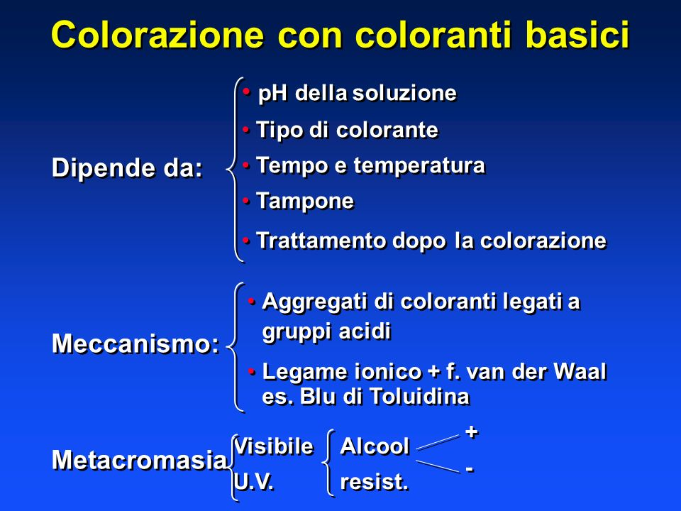 Colorazione con coloranti basici