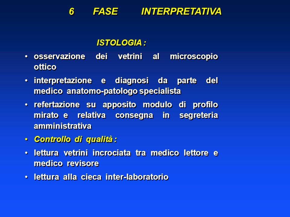 6 FASE INTERPRETATIVA ISTOLOGIA :
