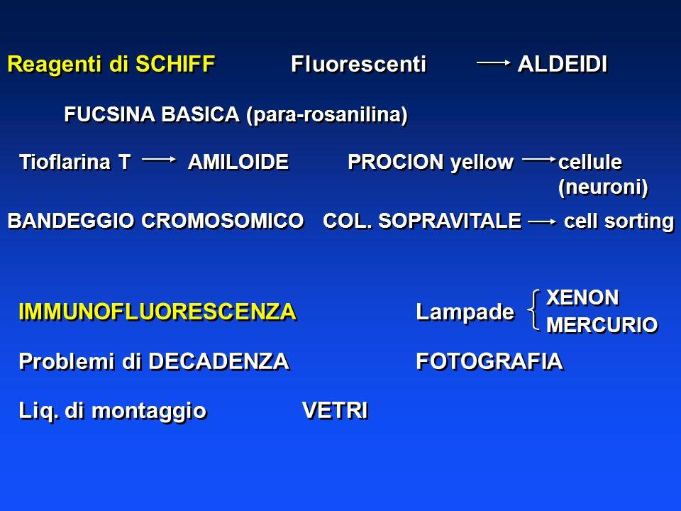 Reagenti di SCHIFF Fluorescenti ALDEIDI