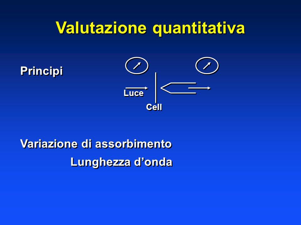 Valutazione quantitativa