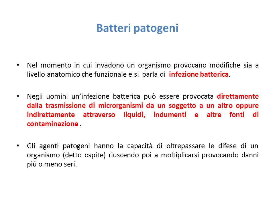 Batteri patogeni