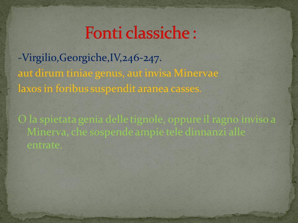 Fonti classiche : -Virgilio,Georgiche,IV,246-247.