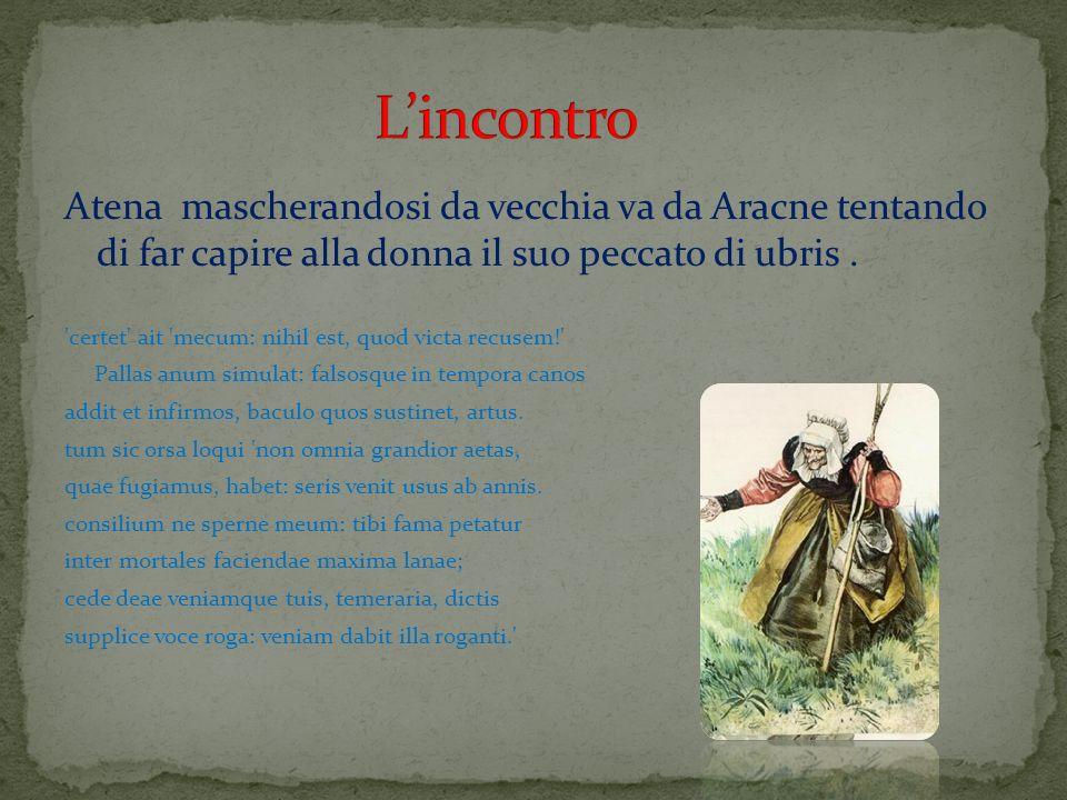 L'incontro Atena mascherandosi da vecchia va da Aracne tentando di far capire alla donna il suo peccato di ubris .