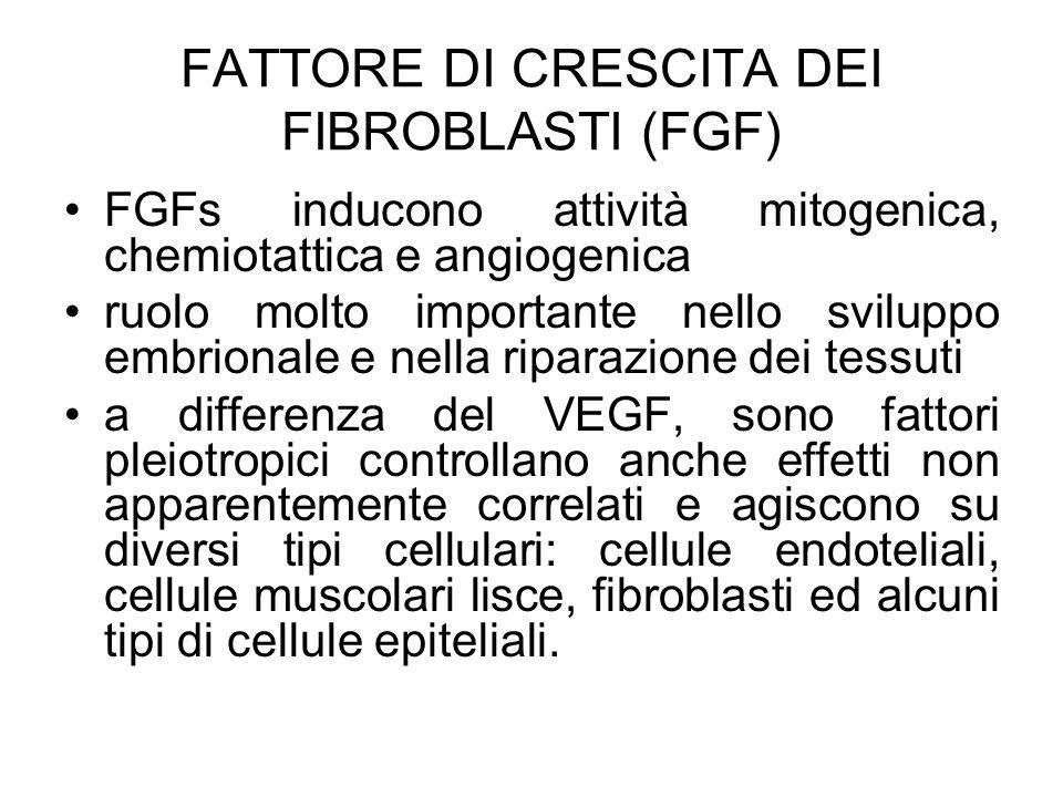 FATTORE DI CRESCITA DEI FIBROBLASTI (FGF)