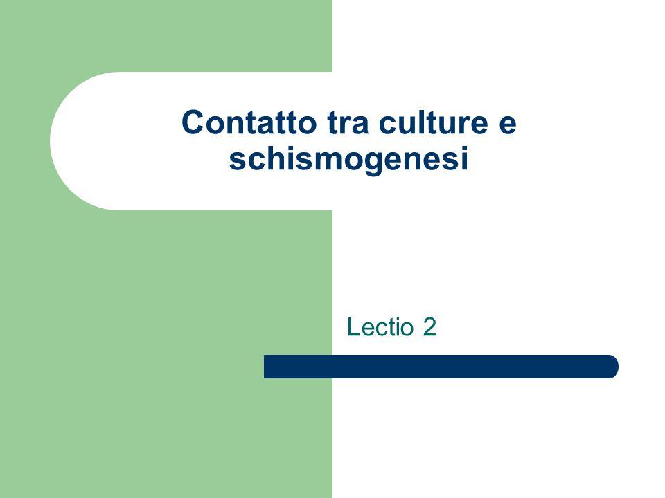 Contatto tra culture e schismogenesi