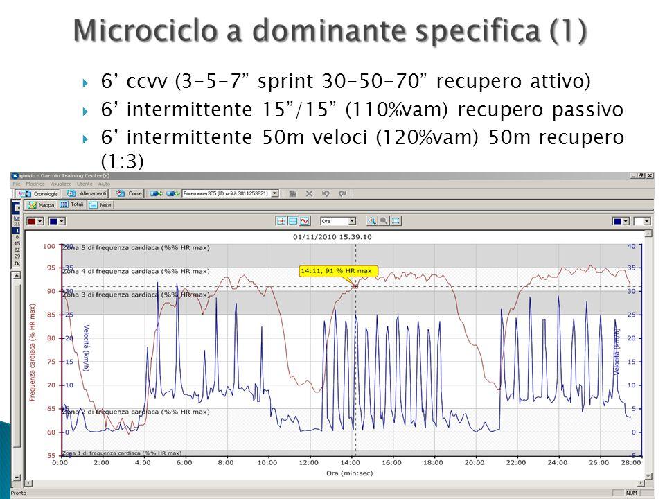 6' ccvv (3-5-7 sprint 30-50-70 recupero attivo)