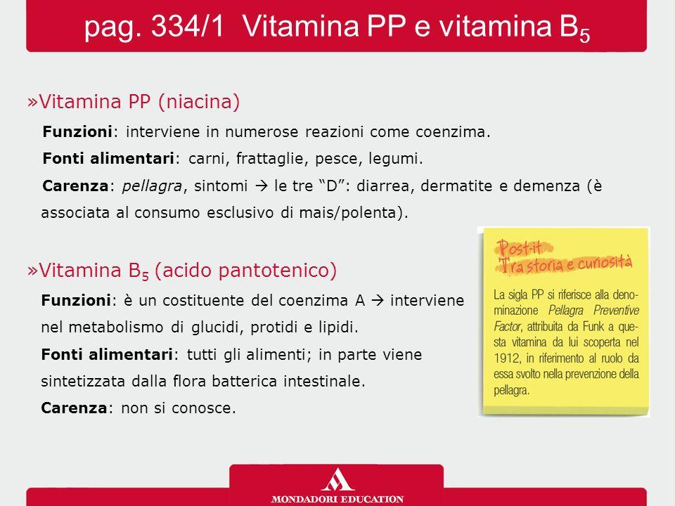 pag. 334/1 Vitamina PP e vitamina B5