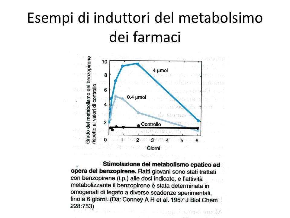 Esempi di induttori del metabolsimo dei farmaci