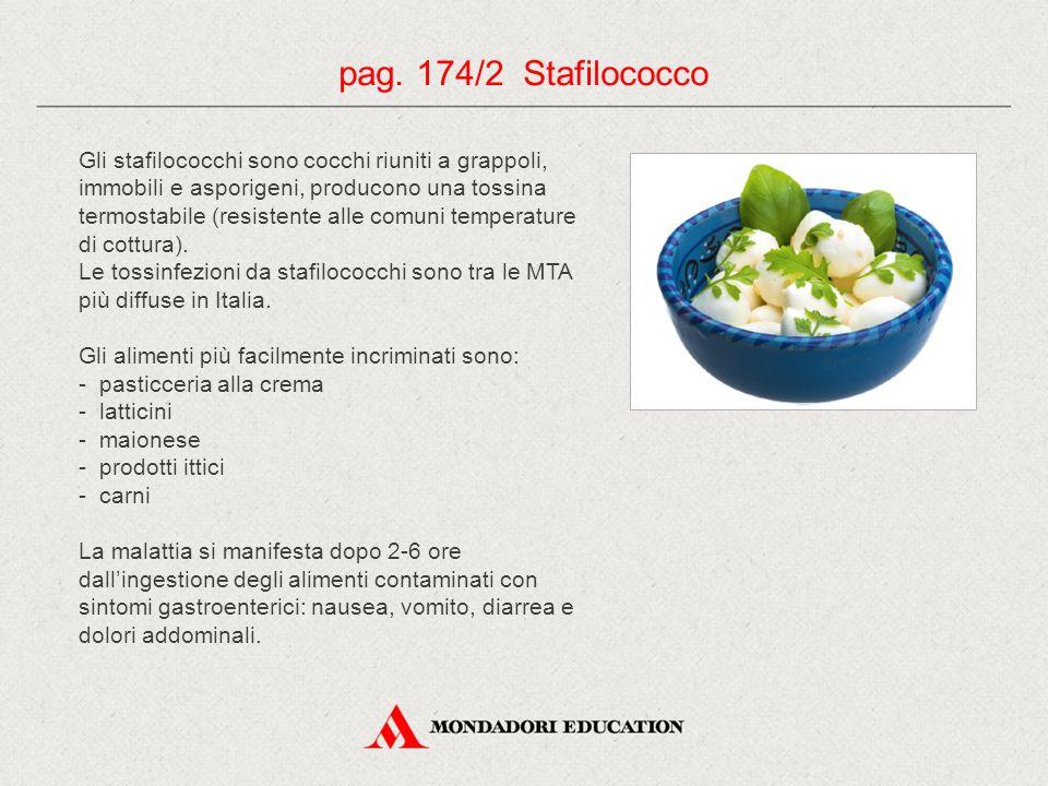 pag. 174/2 Stafilococco