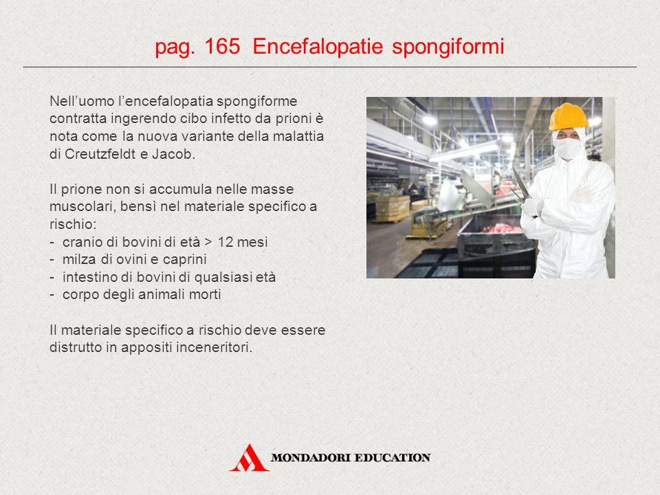 pag. 165 Encefalopatie spongiformi