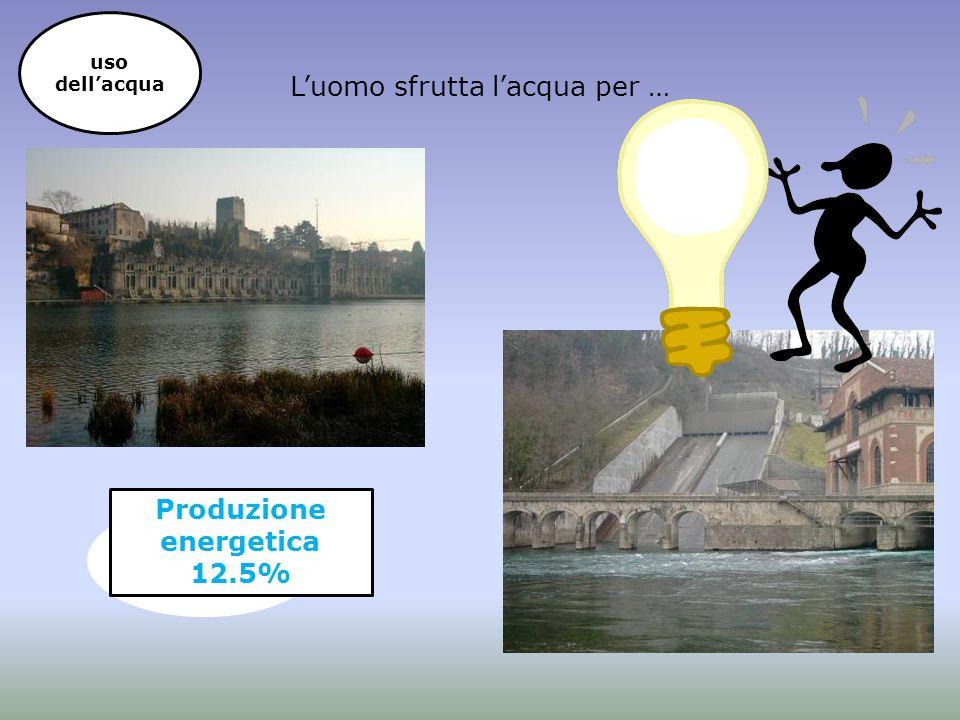 Produzione energetica 12.5%