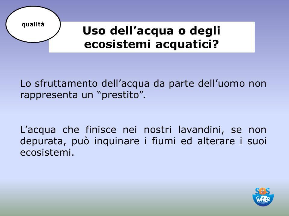 Uso dell'acqua o degli ecosistemi acquatici