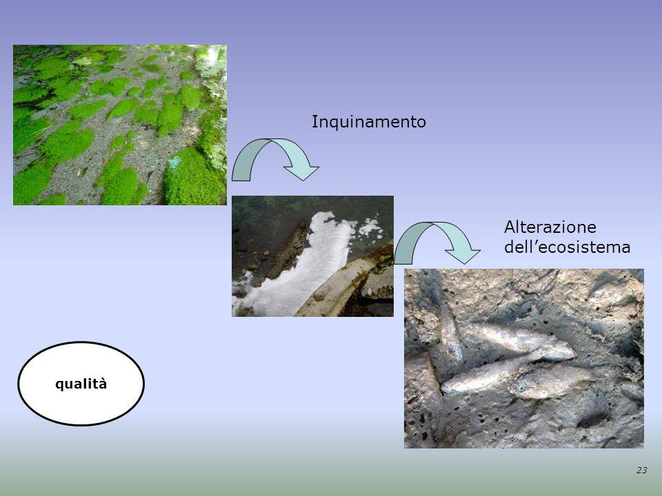 Alterazione dell'ecosistema