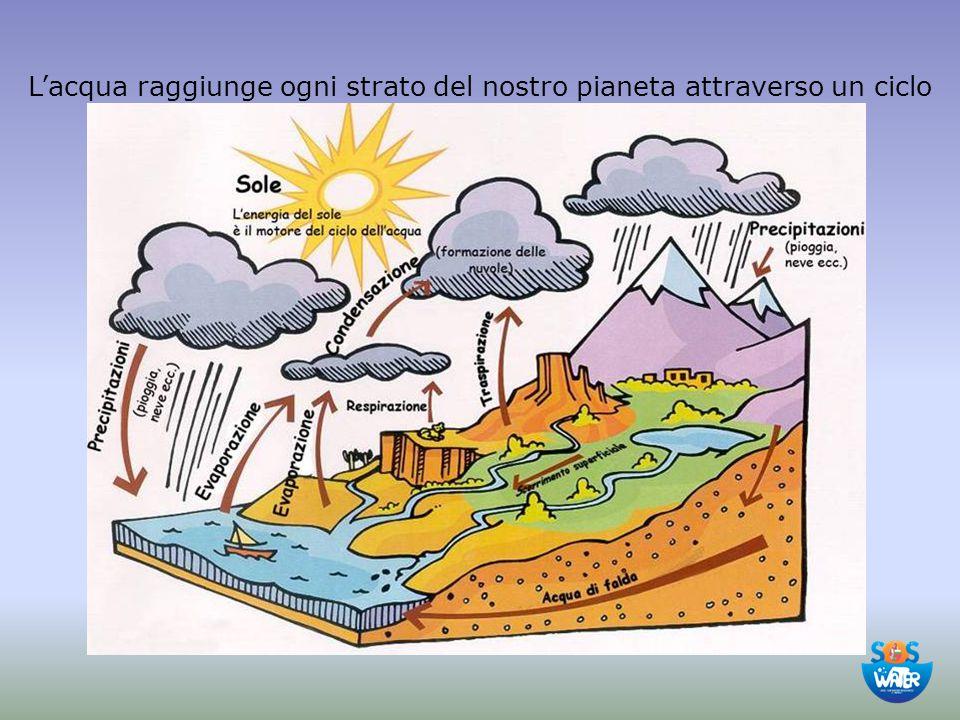 L'acqua raggiunge ogni strato del nostro pianeta attraverso un ciclo